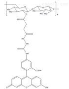 FITC-Dextran MW:70k绿色荧光标记的葡聚糖