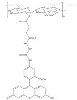 FITC-葡聚糖FITC-Dextran MW:70k绿色荧光标记的葡聚糖