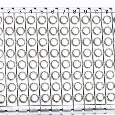 PCR96孔板愛思進同款材質