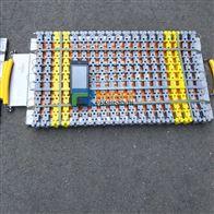 辽宁无线触摸型便携式称重仪厂家