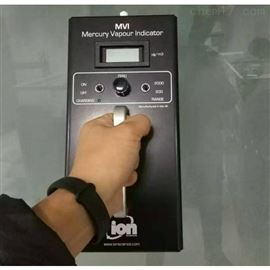 英国离子双量程MVI进口测汞仪手持式