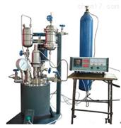 中试催化加氢高压反应釜