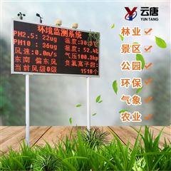 YT-FY12大气负氧离子监测系统厂家报价