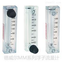 MMA/MMB/MMC/MMF德威尔RMB浮子流量计