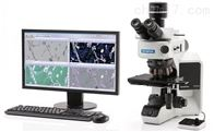MX63/MX63L奥林巴斯MX63/MX63L 半导体/FPD检查显微镜