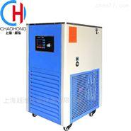 DFY-40/40低温恒温反应浴