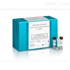 蛋白标记试剂