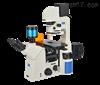 NIB900系列研究级倒置生物显微镜