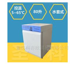 WJ-80A-Ⅱ二氧化碳细胞CO2细菌培养箱