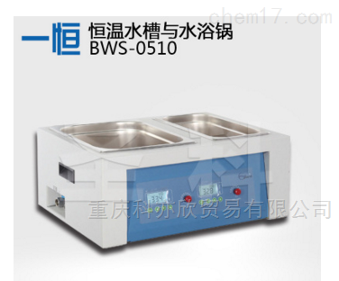 恒温水槽与水浴锅(两用)/水槽