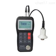 NDT310H超声波测厚仪(高温型)