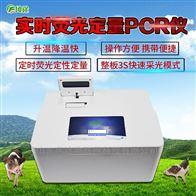 FT-PCR&1非洲猪瘟快速诊断系统