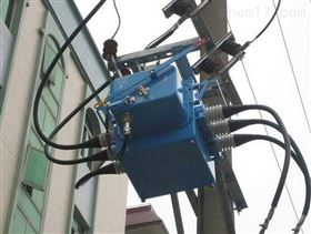 FZW28-12柱上高压真空负荷开关10kv现货