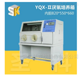 YQX-Ⅱ厌氧培养细菌/厌氧生物培养箱