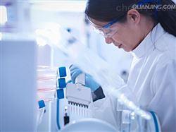 RAB-iCell-s012兔表皮干细胞/免疫荧光鉴定