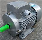 MS8024 0.75KWMS8024 中研紫光三相异步电动机
