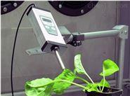 MP100叶绿素荧光自动监测仪