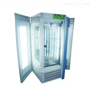 智能程控光照培养箱 强光型 容量350L
