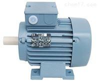 MA 112M2-B5MarelliMotori电机