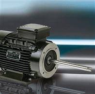 AMH112MCA2LAFERT电机