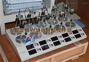 數顯恒溫十工位磁力攪拌器HJ-10A