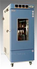 FCH系列药品强光照射试验箱