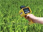 葉綠素測量儀