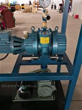 4XMZK-40002000m³/h真空泵