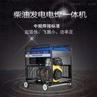 250A自发电电焊两用机