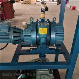 供应真空泵/承装修试设备