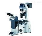 大型倒置荧光生物显微镜