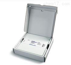 共聚維酮中肼的含量限度檢測用薄層板