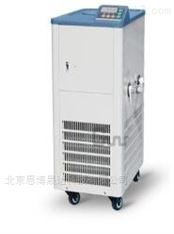 DLSB-5/10低温冷却液循环泵水浴
