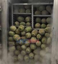 榴莲液氮冷冻机