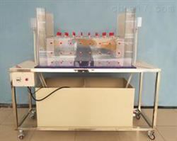 TKDZ-S124三维水动力弥散实验装置