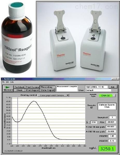 核酸抽提分子生物学技术服务