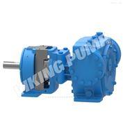 4323 AX系列美国威肯VIKING通用产品泵