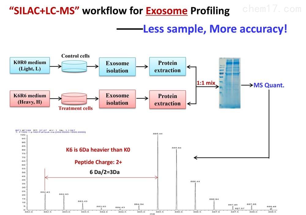 SILAC-exosome定量分析蛋白组学服务