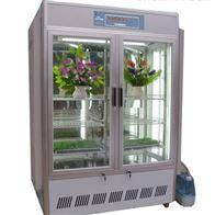 SYH-P500人工气候箱