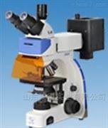 双目生物显微镜HD-UY202i