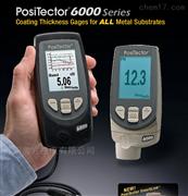 美国Defelsko漆膜厚度涂层测量仪6000N1