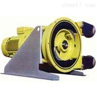 RB6-02V瑞典ALBIN泵