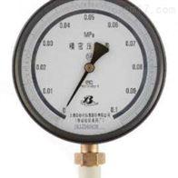 YB-100 、251精密压力表