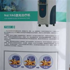 YAG半导体激光治疗仪
