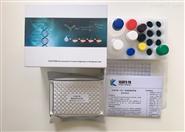小鼠胰岛素(INS)ELISA定量试剂盒
