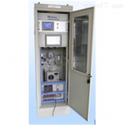 ppbRAE 3000 VOC 检测仪