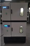 LHS-2C250双层叠加式恒温恒湿培养箱