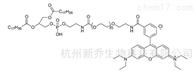 DSPE-PEGRB-PEG-DSPE/ Rhodamine B-PEG-DSPE磷脂