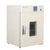 DHG-0系列250℃立式鼓风干燥箱