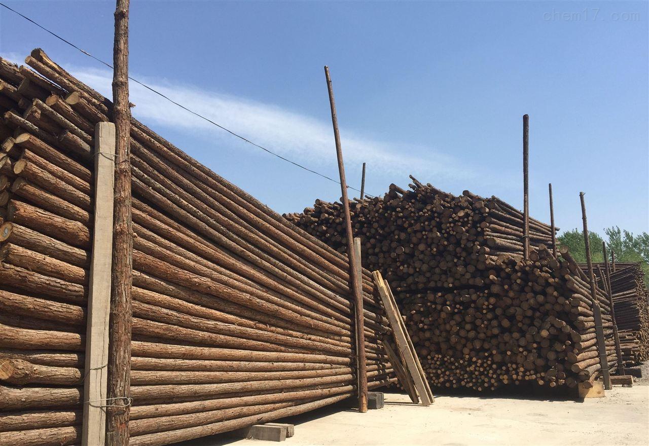 天津绿化杉木杆 树木支撑杆